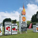 Roadside signs advertise a range of Hawke's Bay summmer fruits on offer.