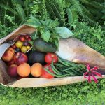 A colourful selection of Hawke's Bay's summer produce